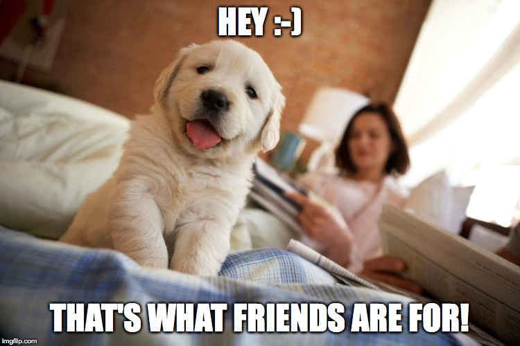 HEY :-) THAT'S WHAT FRIENDS ARE FOR! | made w/ Imgflip meme maker