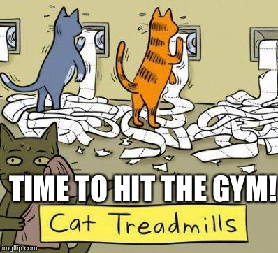 TIME TO HIT THE GYM! | made w/ Imgflip meme maker