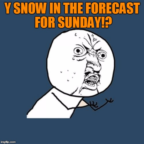 Y U No Meme | Y SNOW IN THE FORECAST FOR SUNDAY!? | image tagged in memes,y u no | made w/ Imgflip meme maker