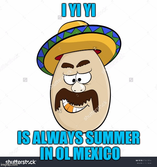 I YI YI IS ALWAYS SUMMER IN OL MEXICO | made w/ Imgflip meme maker