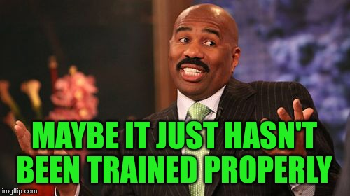 Steve Harvey Meme | MAYBE IT JUST HASN'T BEEN TRAINED PROPERLY | image tagged in memes,steve harvey | made w/ Imgflip meme maker