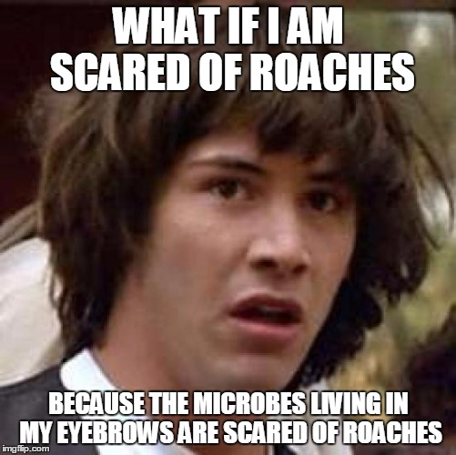 Conspiracy Keanu | WHAT IF I AM SCARED OF ROACHES BECAUSE THE MICROBES LIVING IN MY EYEBROWS ARE SCARED OF ROACHES | image tagged in memes,conspiracy keanu,cockroaches | made w/ Imgflip meme maker