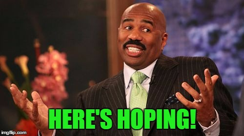 Steve Harvey Meme | HERE'S HOPING! | image tagged in memes,steve harvey | made w/ Imgflip meme maker