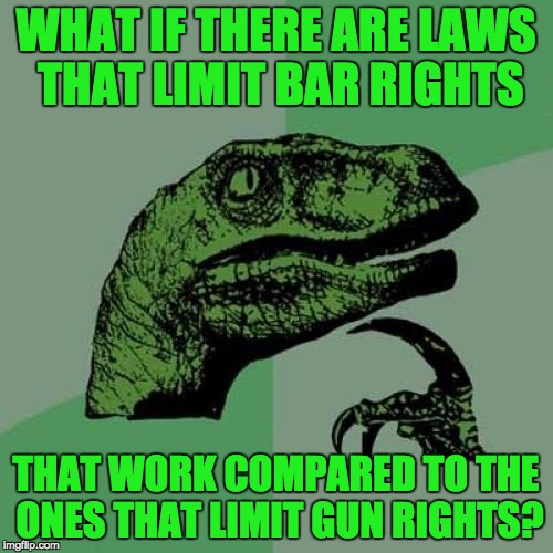 Philosoraptor Meme | WHAT IF THERE ARE LAWS THAT LIMIT BAR RIGHTS THAT WORK COMPARED TO THE ONES THAT LIMIT GUN RIGHTS? | image tagged in memes,philosoraptor | made w/ Imgflip meme maker