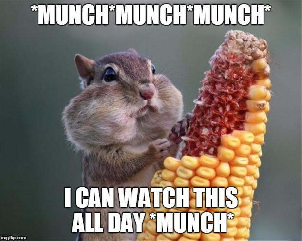 *MUNCH*MUNCH*MUNCH* I CAN WATCH THIS ALL DAY *MUNCH* | made w/ Imgflip meme maker
