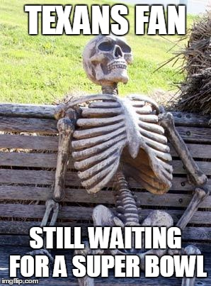 Waiting Skeleton Meme | TEXANS FAN STILL WAITING FOR A SUPER BOWL | image tagged in memes,waiting skeleton | made w/ Imgflip meme maker