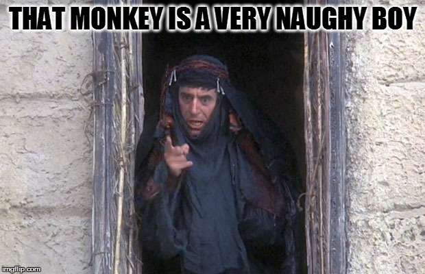 Life Of Brian  | THAT MONKEY IS A VERY NAUGHY BOY | image tagged in life of brian | made w/ Imgflip meme maker