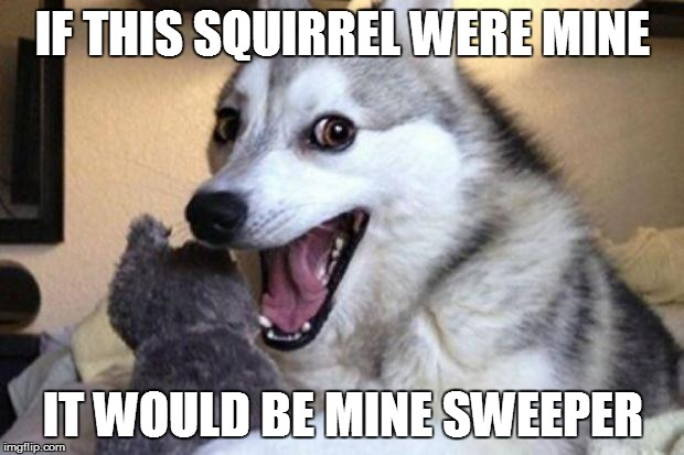 IF THIS SQUIRREL WERE MINE IT WOULD BE MINE SWEEPER | made w/ Imgflip meme maker