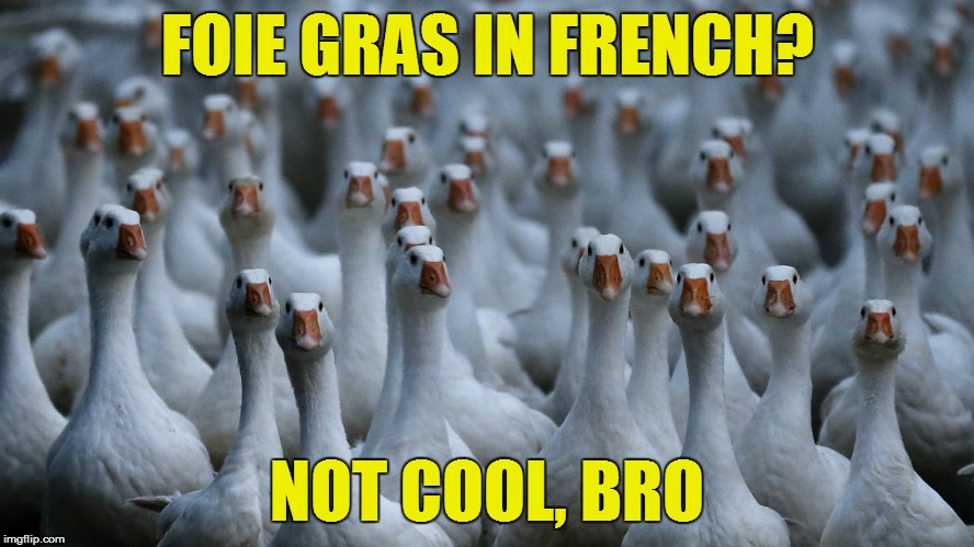 FOIE GRAS IN FRENCH? NOT COOL, BRO | made w/ Imgflip meme maker