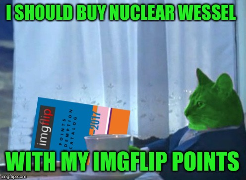 RayCat redeeming points | I SHOULD BUY NUCLEAR WESSEL WITH MY IMGFLIP POINTS | image tagged in raycat redeeming points | made w/ Imgflip meme maker
