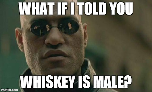 Matrix Morpheus Meme | WHAT IF I TOLD YOU WHISKEY IS MALE? | image tagged in memes,matrix morpheus | made w/ Imgflip meme maker