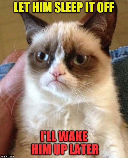 Grumpy Cat Meme | LET HIM SLEEP IT OFF I'LL WAKE HIM UP LATER | image tagged in memes,grumpy cat | made w/ Imgflip meme maker