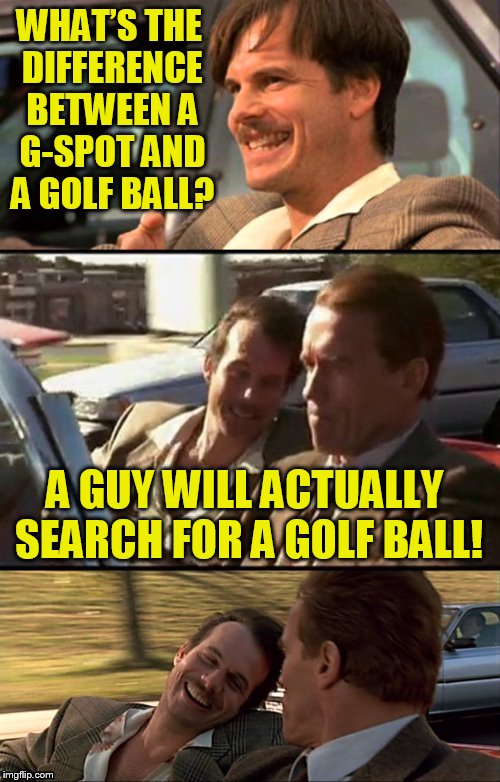 Bill Paxton Scummy Jokes | WHAT'S THE DIFFERENCE BETWEEN A G-SPOT AND A GOLF BALL? A GUY WILL ACTUALLY SEARCH FOR A GOLF BALL! | image tagged in bill paxton scummy jokes,meme,jokes,funny memes,laughs,bad pun | made w/ Imgflip meme maker
