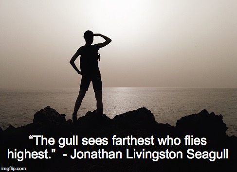 "Motivation | ""The gull sees farthest who flies highest."" - Jonathan Livingston Seagull 