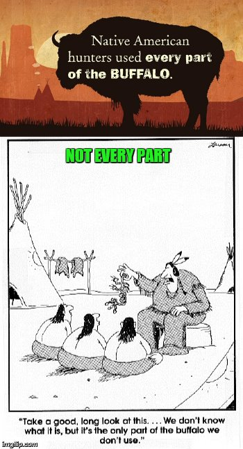 Native Americans used every part of the buffalo?   Myth. | NOT EVERY PART | image tagged in memes,native americans,buffalo,far side | made w/ Imgflip meme maker