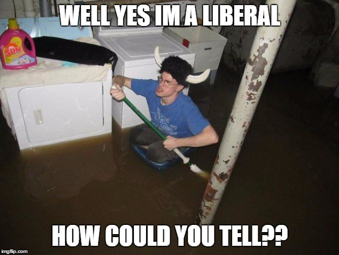 Laundry Viking | WELL YES IM A LIBERAL HOW COULD YOU TELL?? | image tagged in memes,laundry viking | made w/ Imgflip meme maker