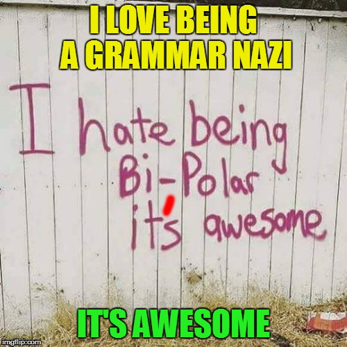 Template kindly provided by DashHopes (for a small fee) | I LOVE BEING A GRAMMAR NAZI IT'S AWESOME | image tagged in memes,grammar nazi,bipolar | made w/ Imgflip meme maker