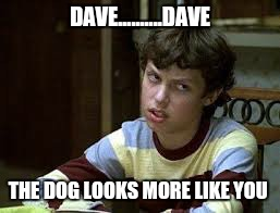 DAVE..........DAVE THE DOG LOOKS MORE LIKE YOU | made w/ Imgflip meme maker