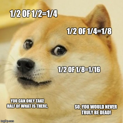 Doge Meme | 1/2 OF 1/2=1/4 1/2 OF 1/4=1/8 1/2 OF 1/8=1/16 YOU CAN ONLY TAKE HALF OF WHAT IS THERE, SO, YOU WOULD NEVER TRULY BE DEAD! | image tagged in memes,doge | made w/ Imgflip meme maker