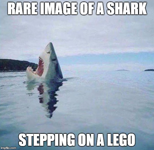 RARE IMAGE OF A SHARK STEPPING ON A LEGO | image tagged in lego week | made w/ Imgflip meme maker