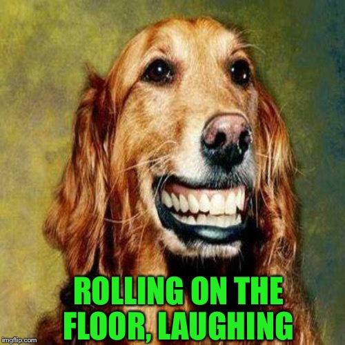 ROLLING ON THE FLOOR, LAUGHING | made w/ Imgflip meme maker