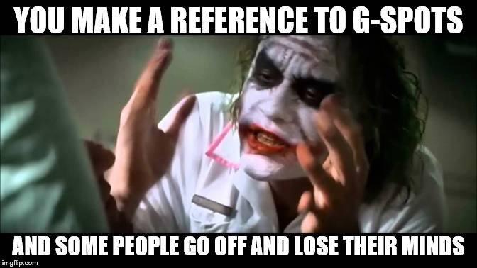 Joker Everyone Loses Their Minds | YOU MAKE A REFERENCE TO G-SPOTS AND SOME PEOPLE GO OFF AND LOSE THEIR MINDS | image tagged in joker everyone loses their minds | made w/ Imgflip meme maker