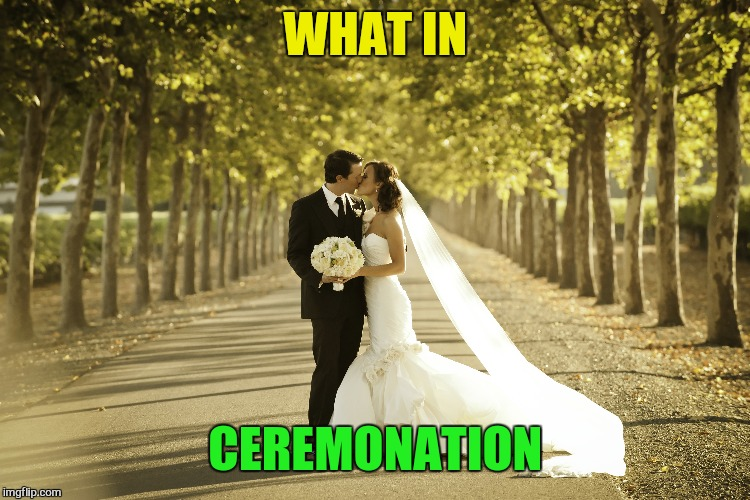 WHAT IN CEREMONATION | made w/ Imgflip meme maker