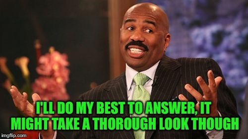 Steve Harvey Meme | I'LL DO MY BEST TO ANSWER, IT MIGHT TAKE A THOROUGH LOOK THOUGH | image tagged in memes,steve harvey | made w/ Imgflip meme maker