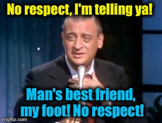 No respect, I'm telling ya! Man's best friend, my foot! No respect! | made w/ Imgflip meme maker