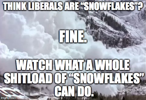 "Avalanche | THINK LIBERALS ARE ""SNOWFLAKES""? WATCH WHAT A WHOLE SHITLOAD OF ""SNOWFLAKES"" CAN DO. FINE. 