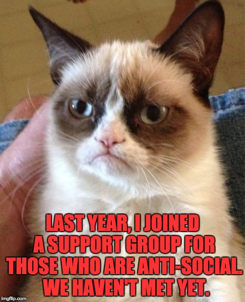 Grumpy Cat Meme | LAST YEAR, I JOINED A SUPPORT GROUP FOR THOSE WHO ARE ANTI-SOCIAL.  WE HAVEN'T MET YET. | image tagged in memes,grumpy cat | made w/ Imgflip meme maker