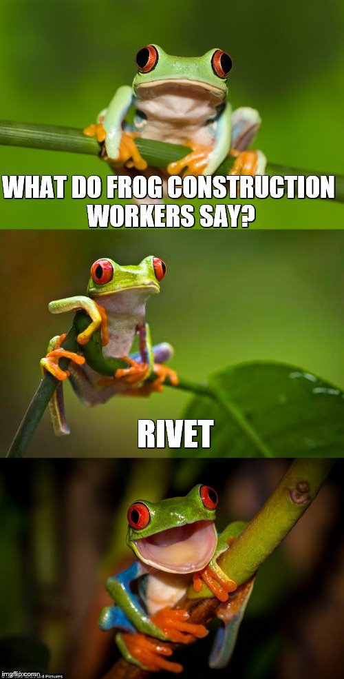 Frog Puns | WHAT DO FROG CONSTRUCTION WORKERS SAY? RIVET | image tagged in frog puns | made w/ Imgflip meme maker