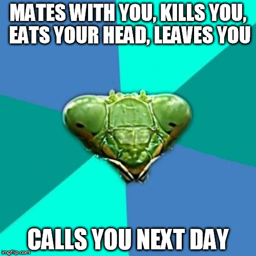 Crazy Girlfriend Praying Mantis Meme | MATES WITH YOU, KILLS YOU, EATS YOUR HEAD, LEAVES YOU CALLS YOU NEXT DAY | image tagged in memes,crazy girlfriend praying mantis | made w/ Imgflip meme maker
