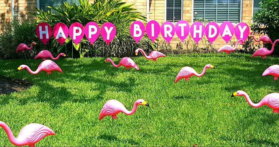1l9q3n birthday flamingos blank template imgflip