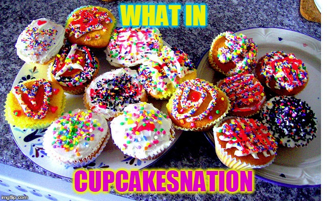 WHAT IN CUPCAKESNATION | made w/ Imgflip meme maker