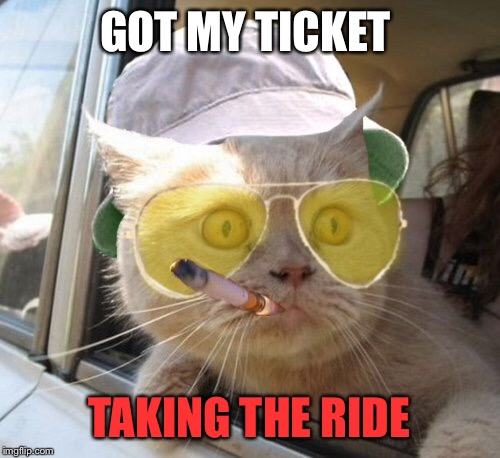 Ticket to ride | GOT MY TICKET TAKING THE RIDE | image tagged in memes,fear and loathing cat | made w/ Imgflip meme maker