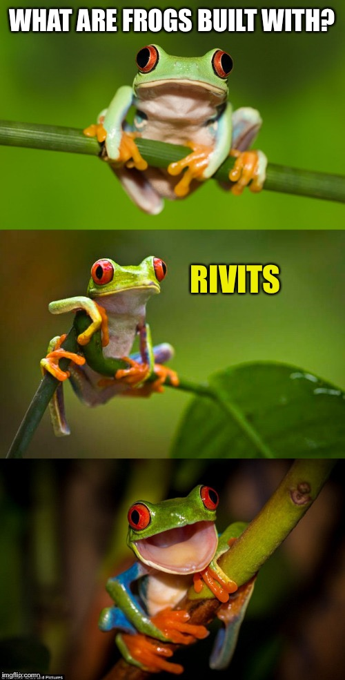 Frog Puns | WHAT ARE FROGS BUILT WITH? RIVITS | image tagged in frog puns | made w/ Imgflip meme maker
