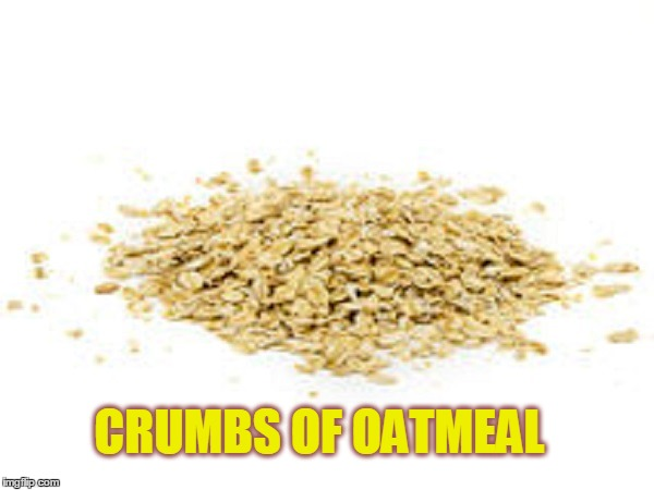 CRUMBS OF OATMEAL | made w/ Imgflip meme maker