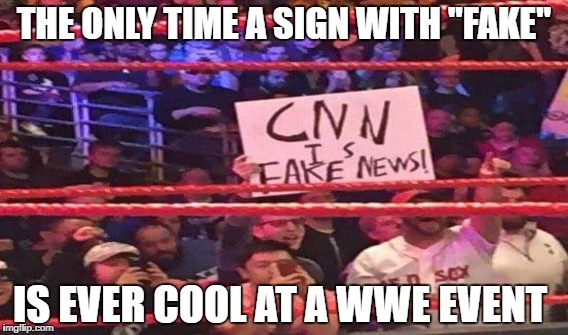 "CNN Fake News Wrestling | THE ONLY TIME A SIGN WITH ""FAKE"" IS EVER COOL AT A WWE EVENT 