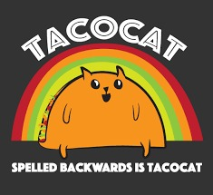 Taco Tuesday | . | image tagged in memes,cat,taco tuesday | made w/ Imgflip meme maker