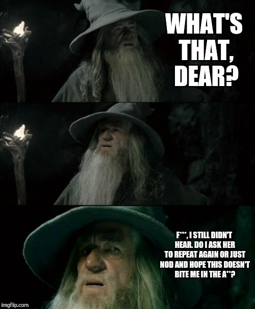Confused Gandalf Meme | WHAT'S THAT, DEAR? F***, I STILL DIDN'T HEAR. DO I ASK HER TO REPEAT AGAIN OR JUST NOD AND HOPE THIS DOESN'T BITE ME IN THE A**? | image tagged in memes,confused gandalf | made w/ Imgflip meme maker
