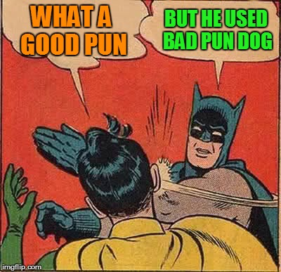 Batman Slapping Robin Meme | WHAT A GOOD PUN BUT HE USED BAD PUN DOG | image tagged in memes,batman slapping robin | made w/ Imgflip meme maker