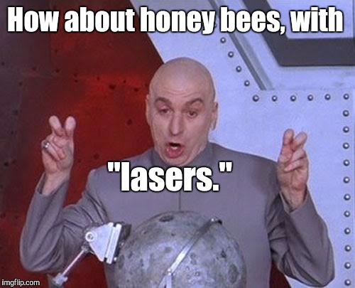 "Dr Evil Laser Meme | How about honey bees, with ""lasers."" 