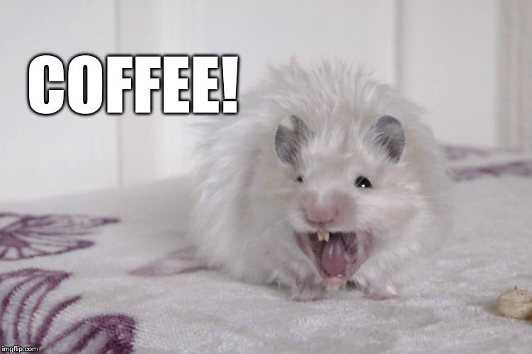 Coffee! |  COFFEE! | image tagged in coffee addict | made w/ Imgflip meme maker