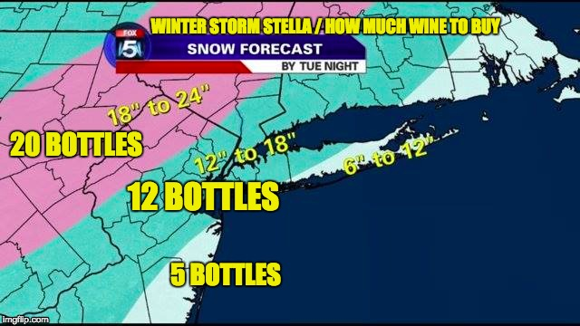 Winter Storm Stella / Wine | WINTER STORM STELLA / HOW MUCH WINE TO BUY 5 BOTTLES 20 BOTTLES 12 BOTTLES | image tagged in wine,snow,stella,springtime,march | made w/ Imgflip meme maker