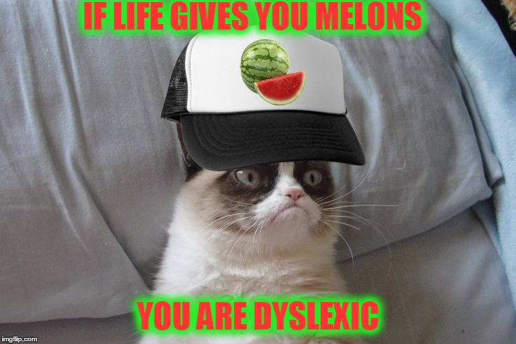 IF LIFE GIVES YOU MELONS YOU ARE DYSLEXIC | made w/ Imgflip meme maker
