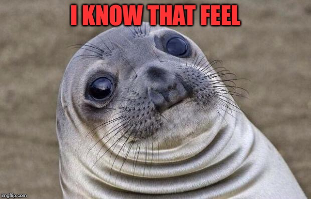 Awkward Moment Sealion Meme | I KNOW THAT FEEL | image tagged in memes,awkward moment sealion | made w/ Imgflip meme maker