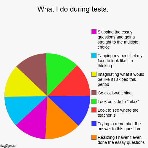 What I do during tests: | Realizing I haven't even done the essay questions, Trying to remember the answer to this question, Look to see whe | image tagged in funny,pie charts | made w/ Imgflip pie chart maker
