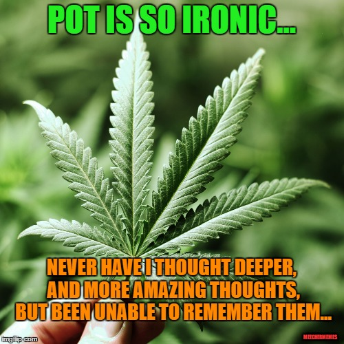 Pot is Ironic | POT IS SO IRONIC... NEVER HAVE I THOUGHT DEEPER, AND MORE AMAZING THOUGHTS, BUT BEEN UNABLE TO REMEMBER THEM... MEECHERMEMES | image tagged in pot,weed,dope,grass,marijuana,smoke | made w/ Imgflip meme maker