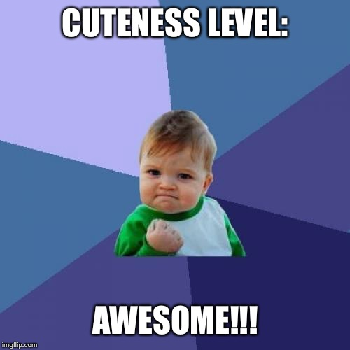 Success Kid Meme | CUTENESS LEVEL: AWESOME!!! | image tagged in memes,success kid | made w/ Imgflip meme maker